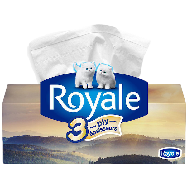 FACIAL TISSUE 3 PLY