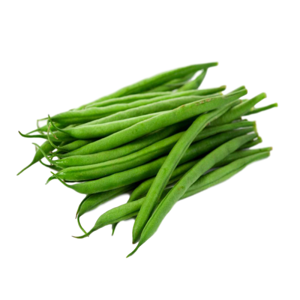 FINE FRENCH BEANS